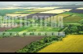 земельна ділянка-Добрівляни